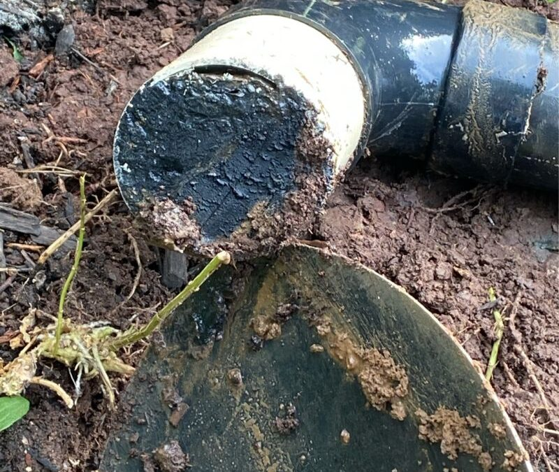 SEPTIC PIPE PLUGGED